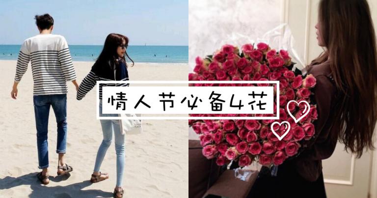 【情人节4花】情人节必备4花,你知道是哪4花吗?!