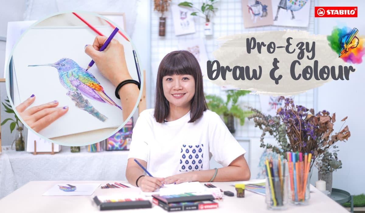 Pro-Ezy Draw & Colour Workshop